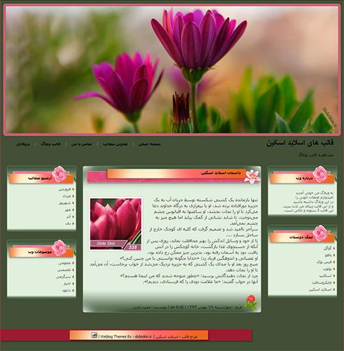 قالب وبلاگ بینظیر گل